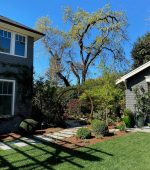 Mt Tam Gardener Services Get to know more about us