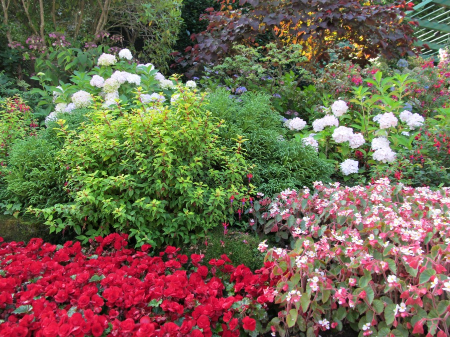 Бучарт сады в августе