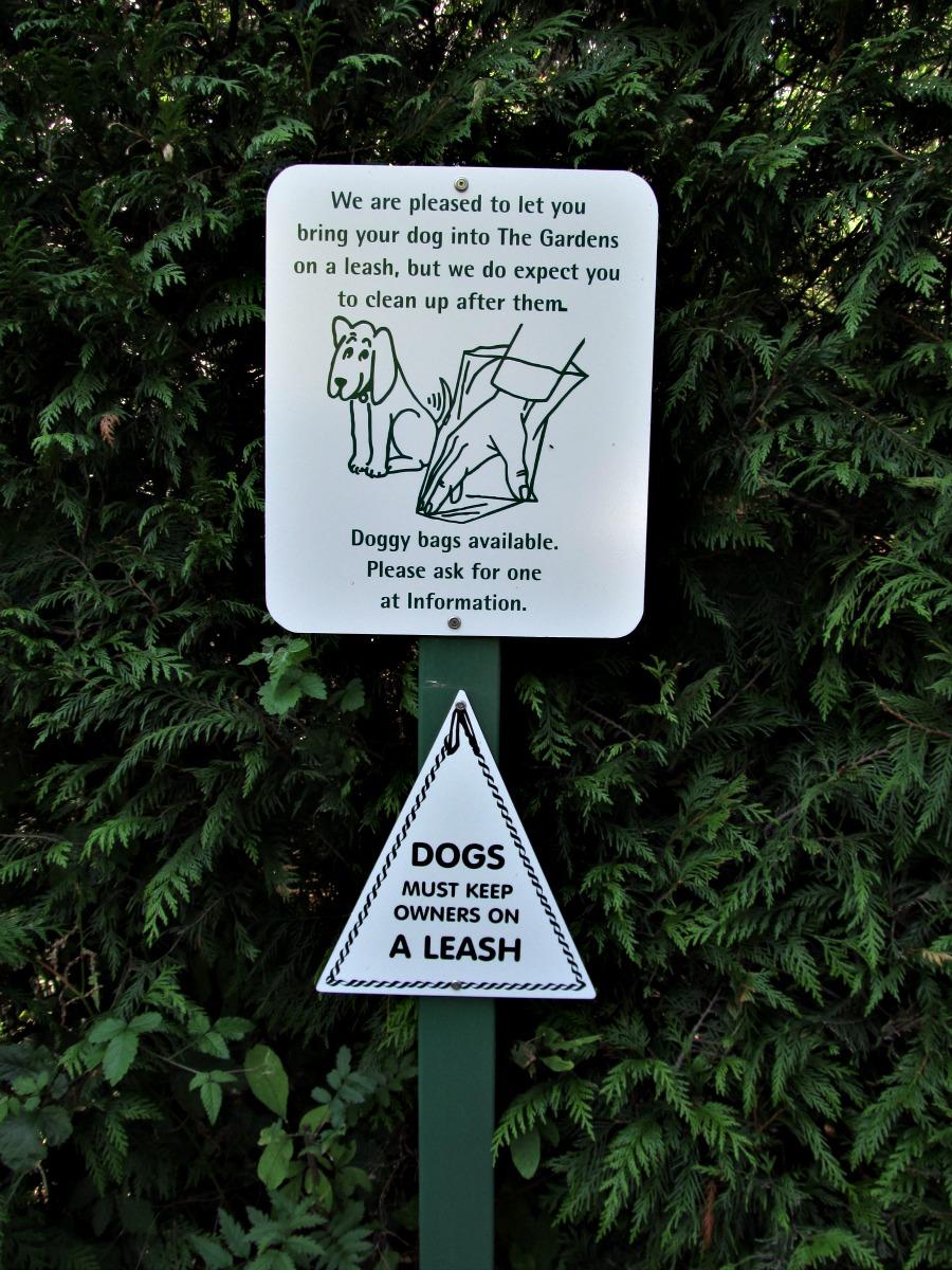 Собаки в Бучарт садах