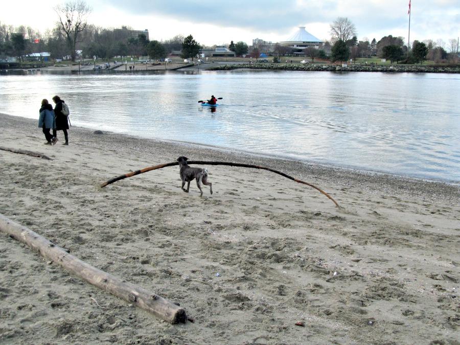 что делать зимой в Ванкувере