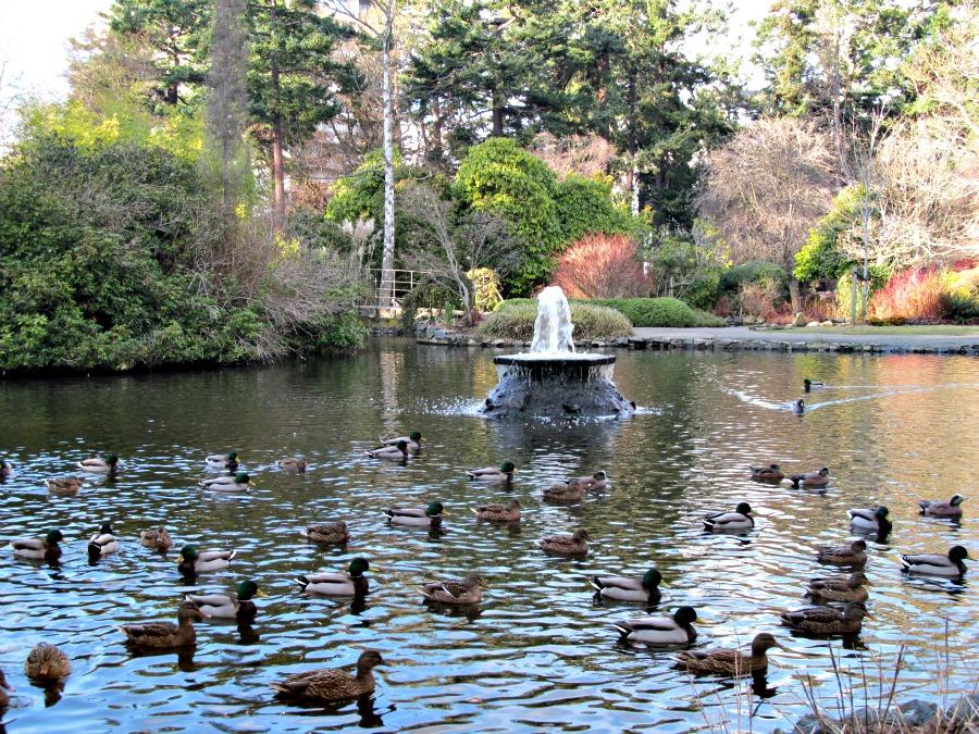парки Виктории