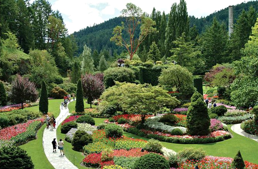 Бучарт сады, Виктория