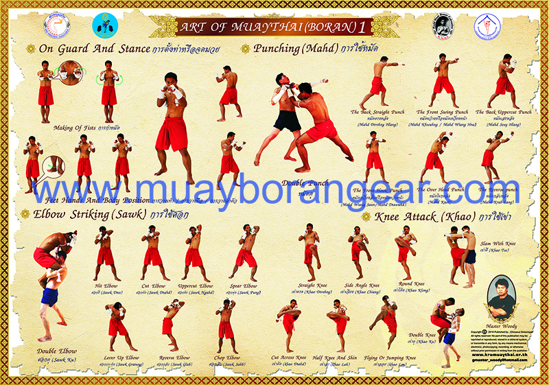poster art of muay thai 5 posters