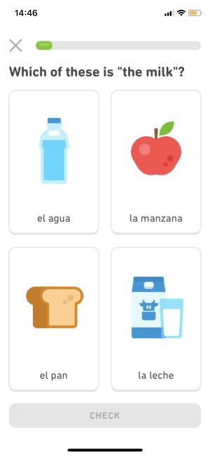Best Travel Apps - Duolingo Lesson