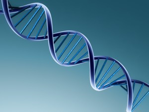 A computer generated image of a double helix DNA strand: dark blue on a lighter blue background.