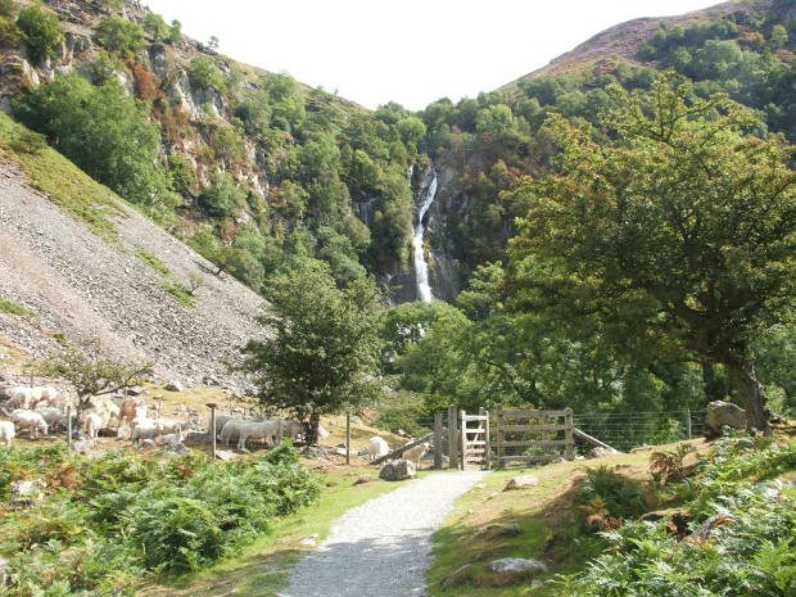 Snowdonia Walks from Abergwyngregyn