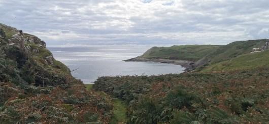 Rhossili Bay and Headland Walk 6.1