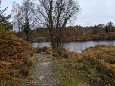 A Walk around Betws-y-coed and Llyn Elsi