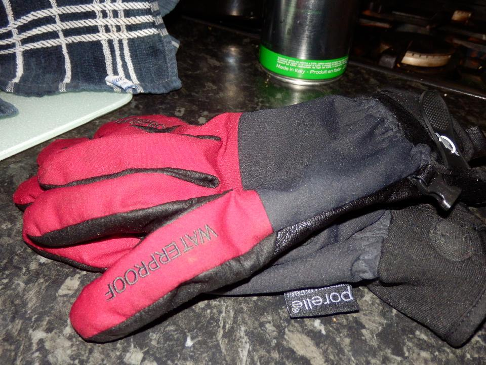 You can't tell from this image exactly how sodden these gloves were at the time.