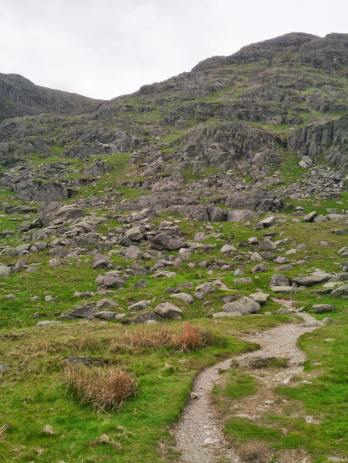 redscrees11_960