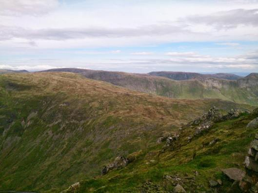 redscrees32_960