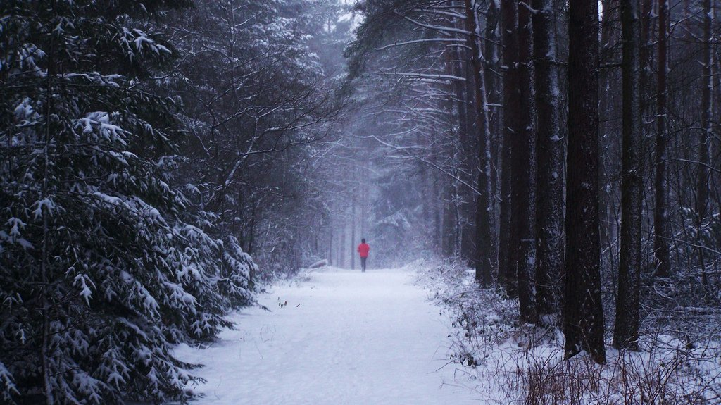 trailrunning snow