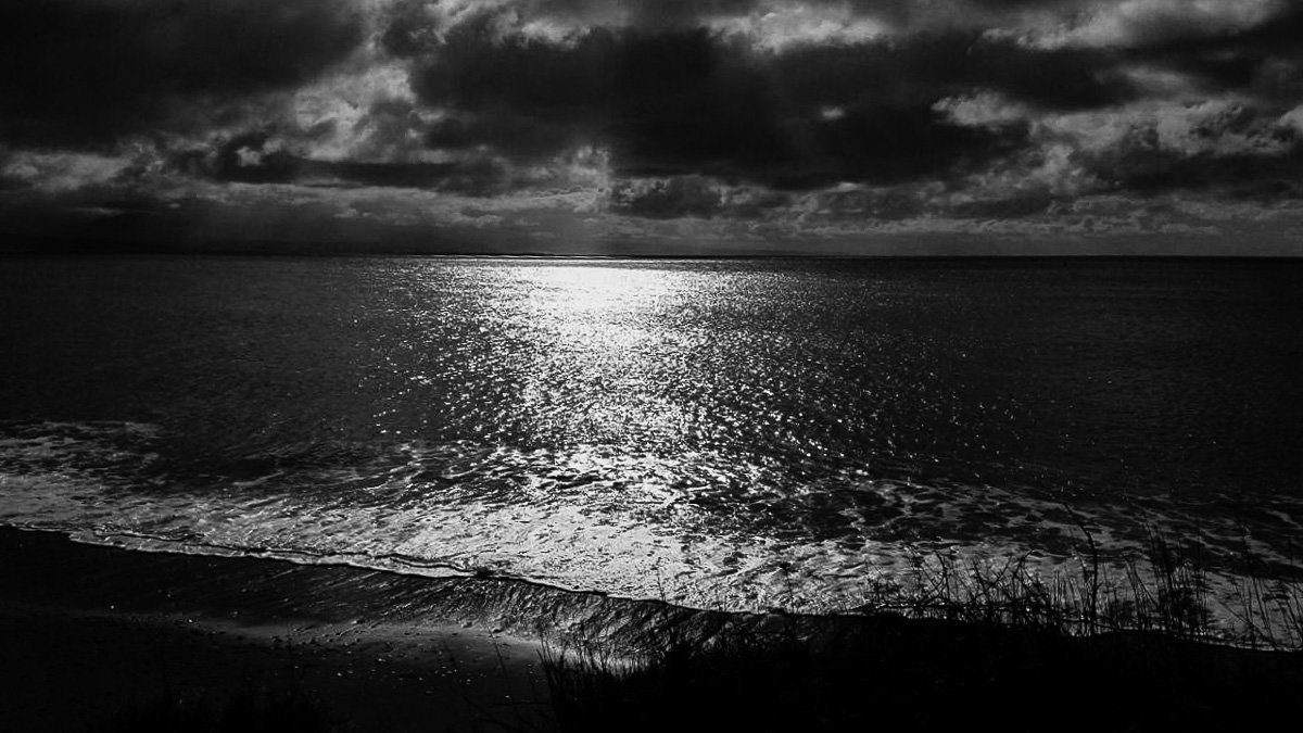 Criccieth and Llanystumdwy Wales Coastal Path Circular Walk | Mud