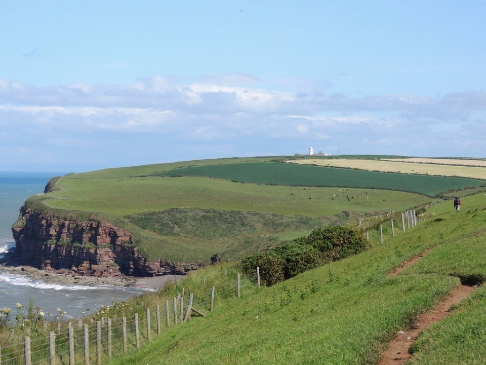 The Cliffs at St Bees
