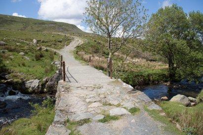 Clogwyn y Gwin Path and Maesgwm (130 of 135)