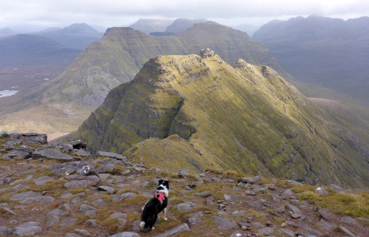 The Horns of Alligin from Sgurr Mhor