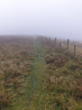 Brown_Clee_Hill_29
