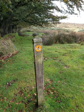 Brown_Clee_Hill_38
