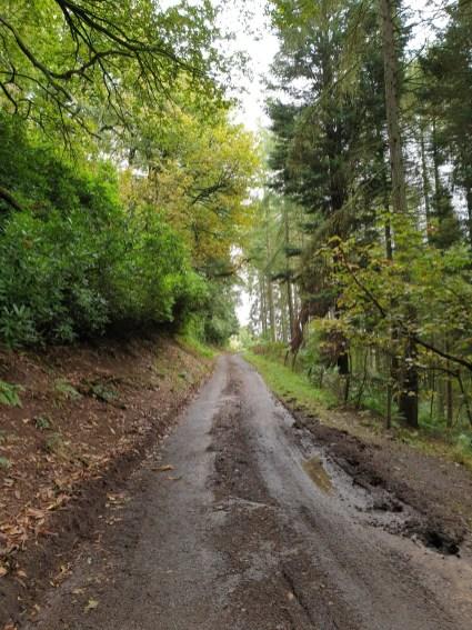 Walk up Brown Clee Hill – Abdon Burf & Clee Burf