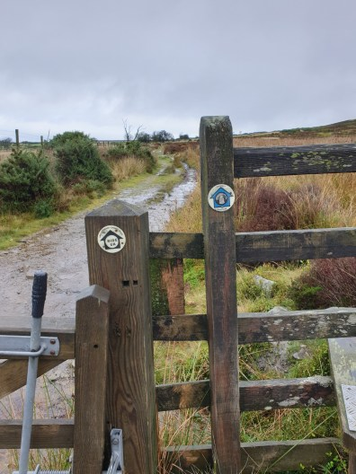 Walk up Stiperstones – Manstone Rock & Devils Chair from The Bog