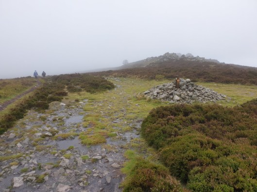 Stiperstones_29