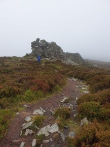 Stiperstones_31