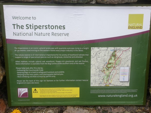 Stiperstones_35
