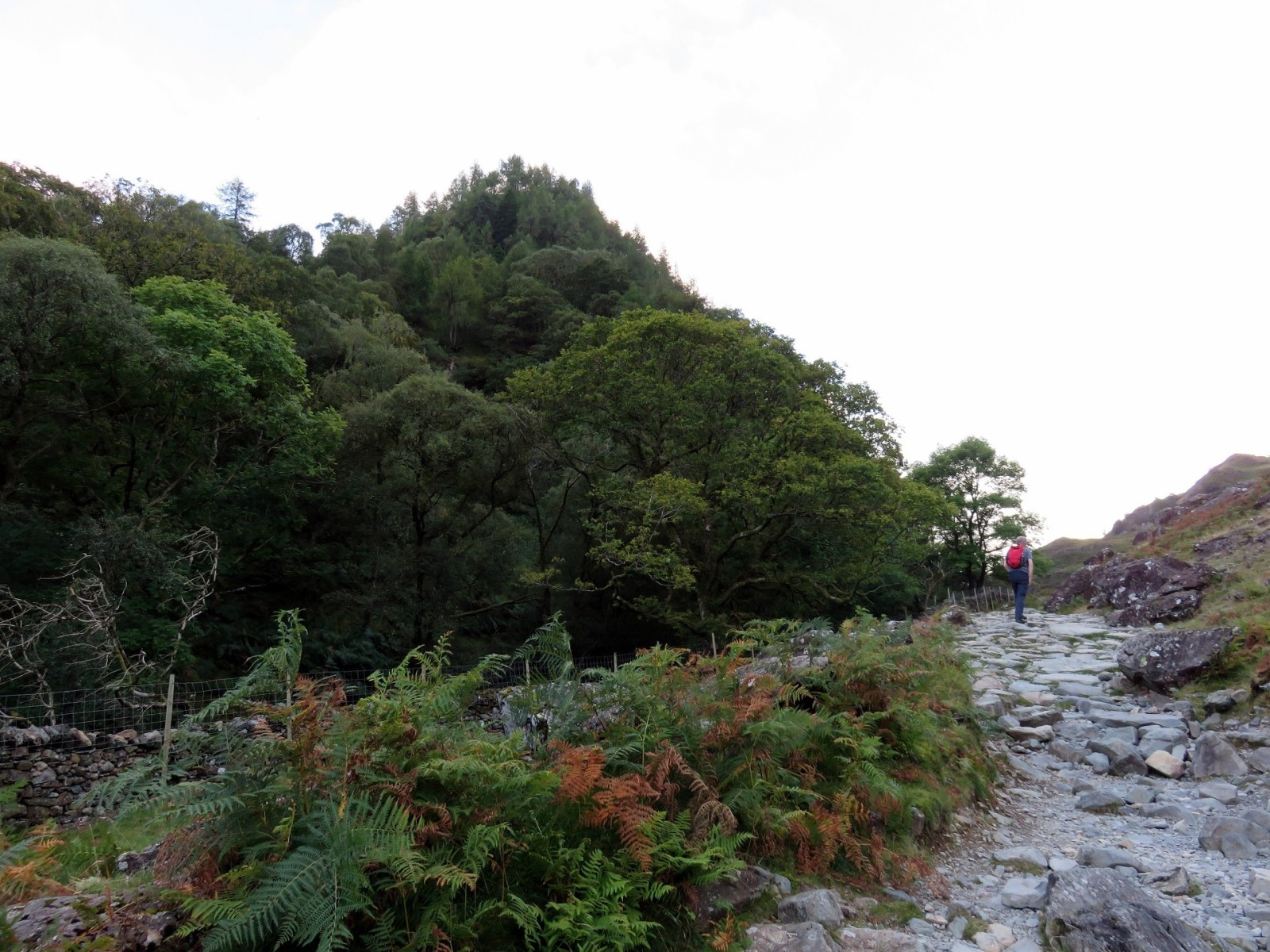 LD - Walk up Castle Crag and Millican's Cave from Grange