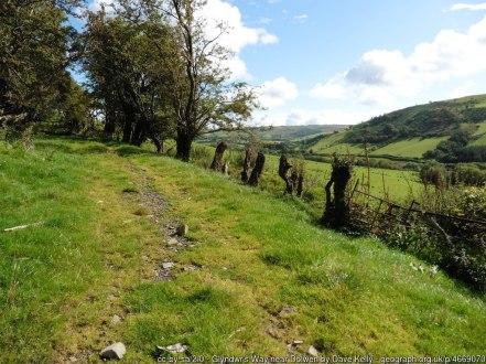 Glyndwr's Way near Dolwen