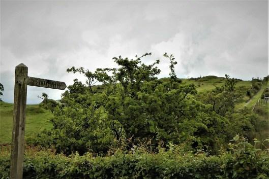 18.1 Walk up Cratlieve - Dromara Hills
