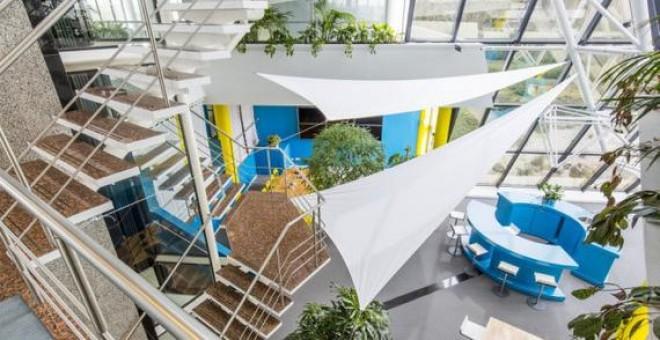 Entornos de trabajo con luz natural y vegetación aumentan el rendimiento y bienestar de los trabajadores