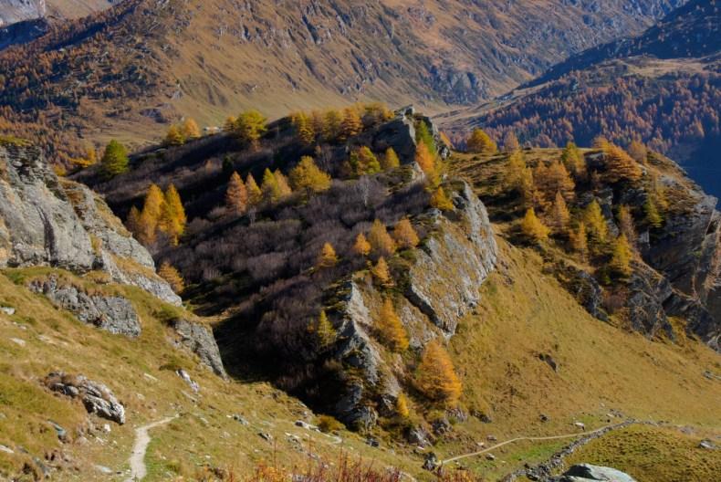 Engadin, Grevasalvas, Maloja, Switzerland