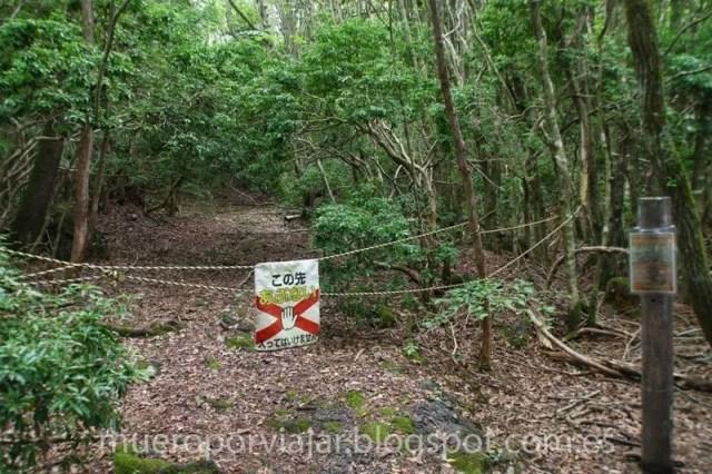 Más caminos cortados en el bosque - Aokigahara
