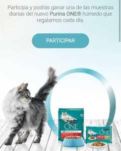 muestras gratis para gatos