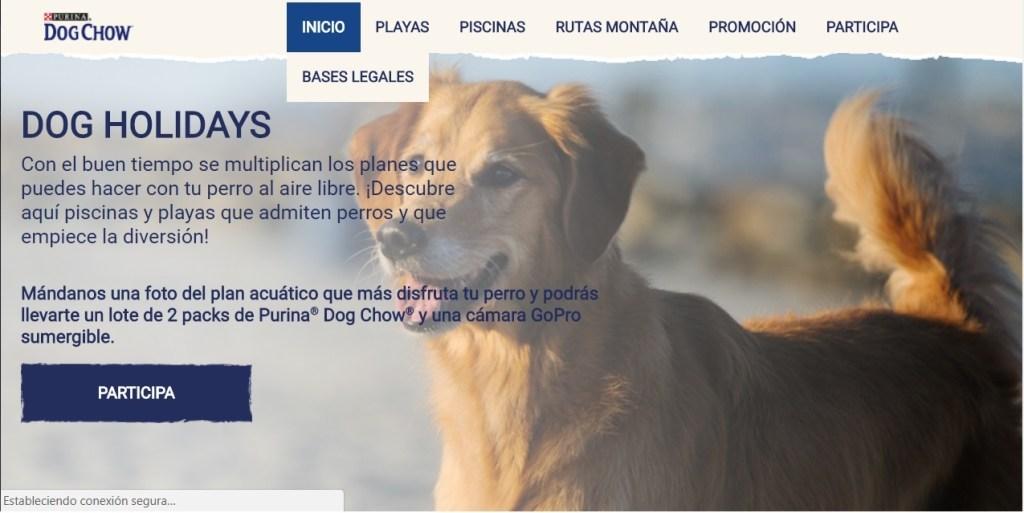 foto concurso perros purina
