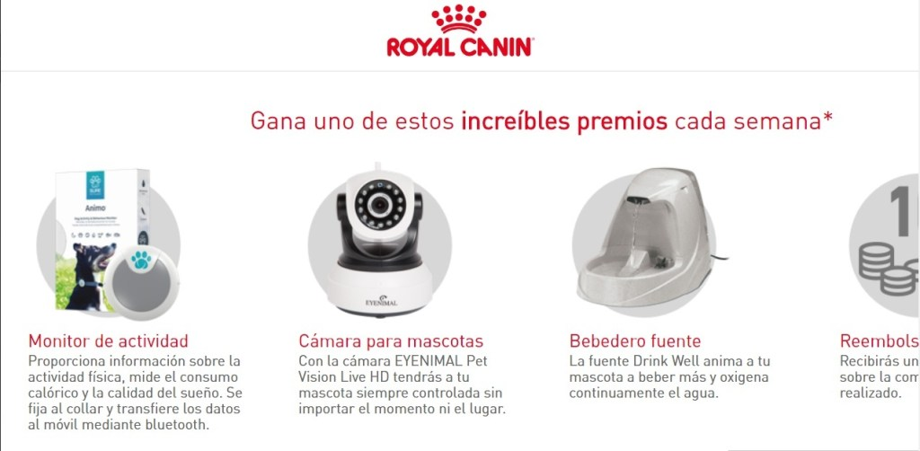 sorteo Royal Canin