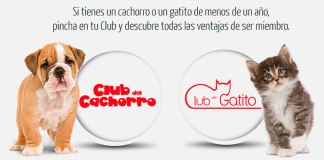 regalos gratis con Royal Canin