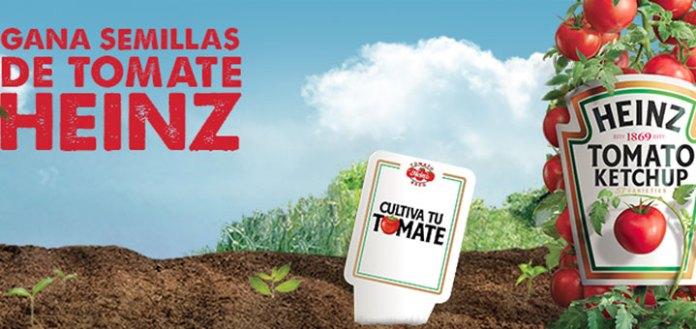 cultiva tu tomate con Heinz