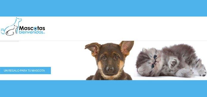 Consigue un regalo con Mascotas bienvenidas