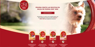 Prueba gratis las recetas en salsa de Purina One Mini