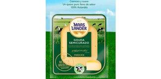 Prueba gratis queso Maaslander
