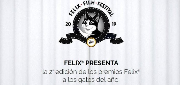 2º Edición de los premios Felix a los gatos del año
