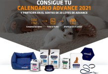 Consigue un Calendario Advance 2021
