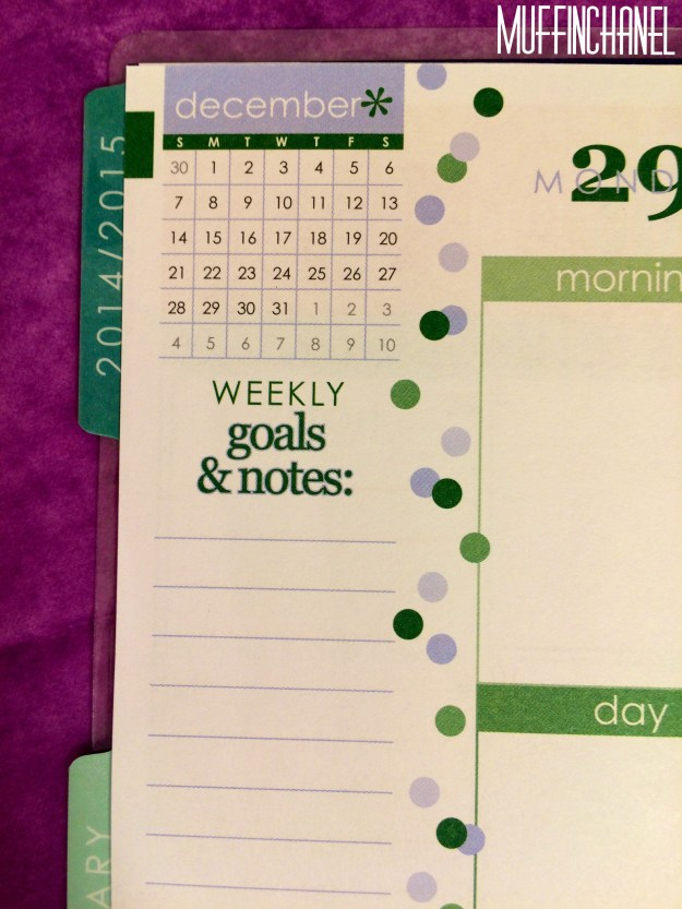 muffinchanel erin condoner life planner 2015 review stripes covers clips calendar wash tape spiral bound 2014 vs 2015 party pops stripes zen gems jolly jester ruler goals notes