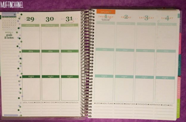 muffinchanel erin condoner life planner 2015 review stripes covers clips calendar wash tape spiral bound 2014 vs 2015 party pops stripes zen gems jolly jester ruler week calendar