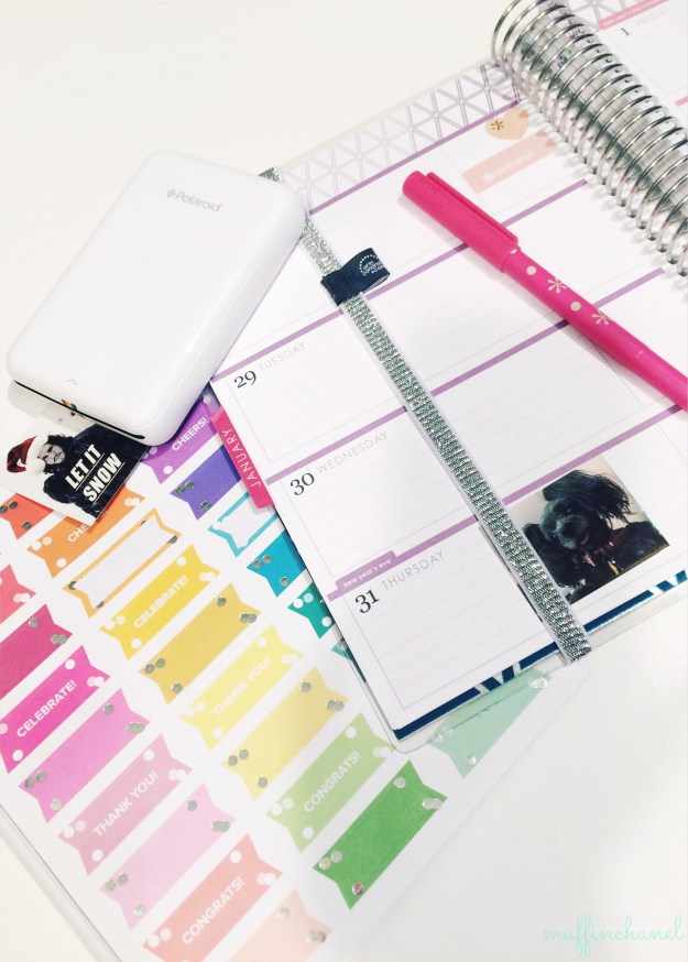 muffinchanel erin condren accessories planning party pops pens sticker book