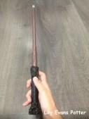 ไม้ของ Harry Potter