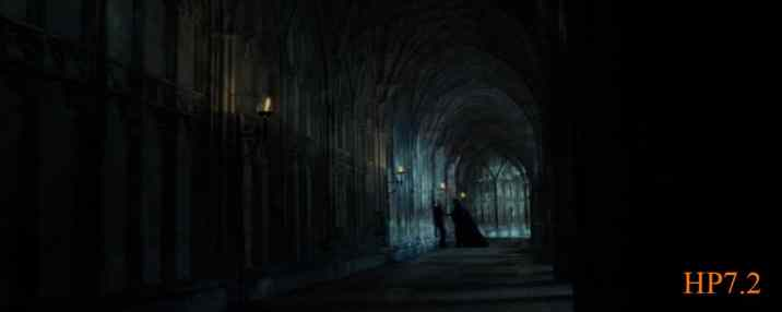 Movie7_2 - 9th shot - From Snape's memory1