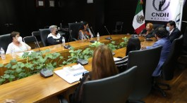 Fotografía: twitter Comisión Nacional de los Derechos Humanos (CNDH)