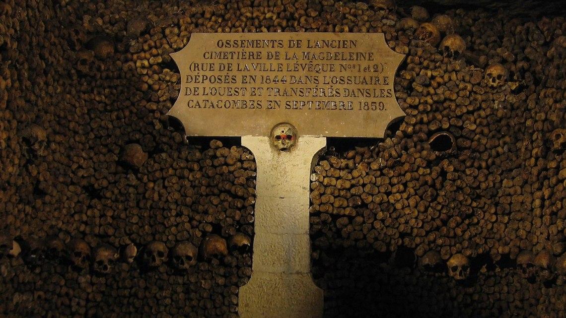 Fotografía: De Vlastula de la Wikipedia en inglés, CC BY-SA 3.0, https://commons.wikimedia.org/w/index.php?curid=6693557